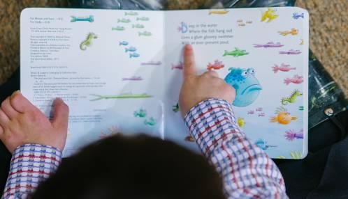 PROEFSCHRIFT: Hoe kinderen met een verstandelijke beperking leren lezen