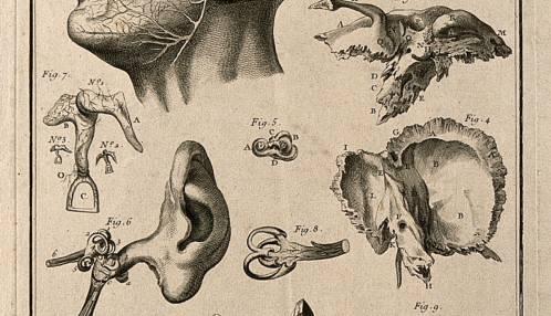 Een nieuwe blik op doofheid