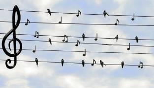 Zit er muziek in een CI?