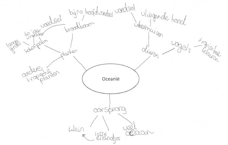 Figuur 1. Concept map getekend door leerling met concepten van het eerste, tweede en derde niveau